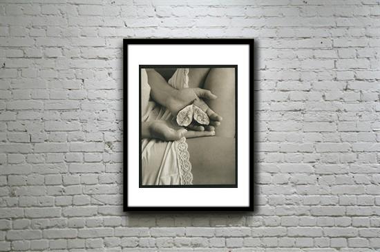 Alternative Photography